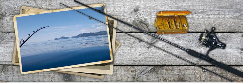 Fishing seasons in alaska peak times for halibut salmon for Peak fishing times