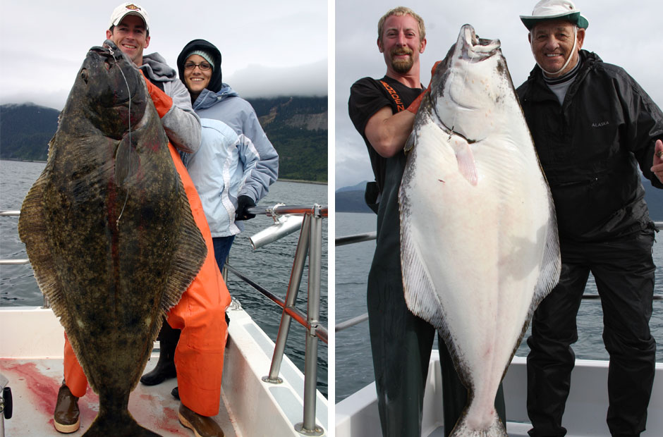 Alaska Halibut Fishing Trips